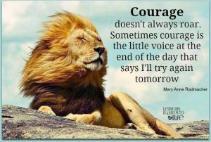 the-courage-to-fail-112316